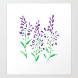 Purple Delphinium Art Print