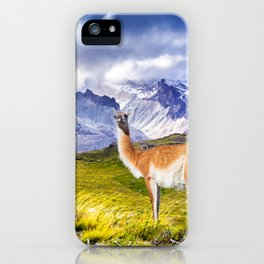 Patagonia landscape in Torres del Paine, Chile iPhone Case