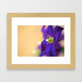 Home grown Framed Art Print