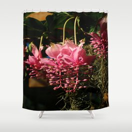 Medinilla Magnifica Shower Curtain