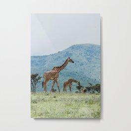 Ngorongoro Crater, Tanzania IV Metal Print