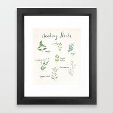Healing Herbs Framed Art Print