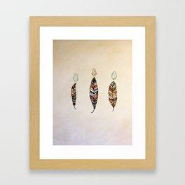 Medicine Feathers Framed Art Print