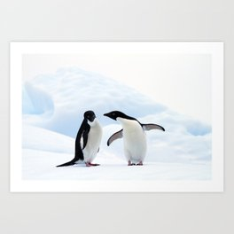 Adelie Penguins Art Print