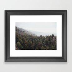 forest for all the trees Framed Art Print
