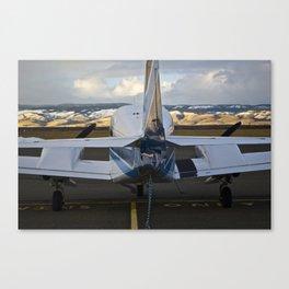 Art of Flight  Canvas Print