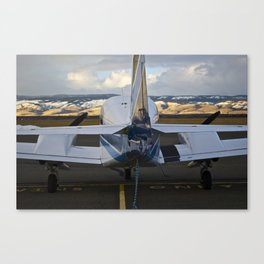 Art of Flight  Canvas Print