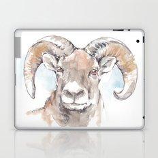Dry Powder Laptop & iPad Skin