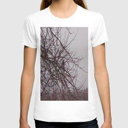 The Raining Blue Jay T-shirt