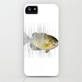 Black Crappie Fish iPhone Case