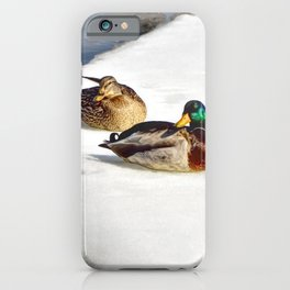 3 Mallards iPhone Case