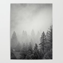 Pines in Fog | Black and White Landscape Poster