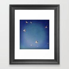 fly.. Framed Art Print