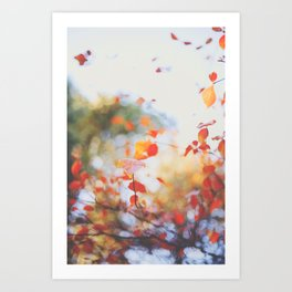 . Orange Leaves . Art Print