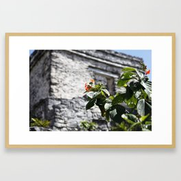 Touch of color in Tulum Framed Art Print