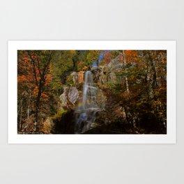 Beaver Meadow Falls Art Print
