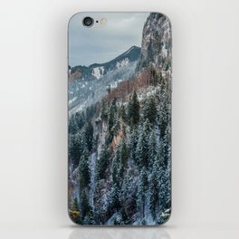 Forest - Bavarian alps iPhone Skin