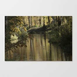 Clearlake Park Willamette River Canvas Print