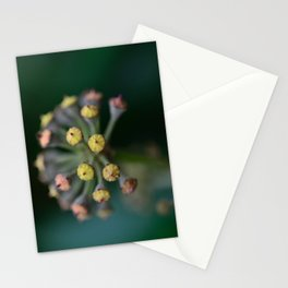 Wild Ivy Stationery Cards