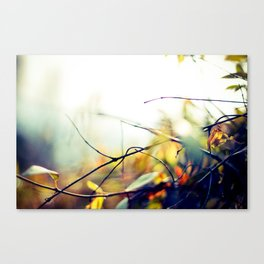 Stick Canvas Print