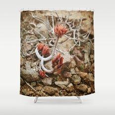 Fleur du désert Shower Curtain