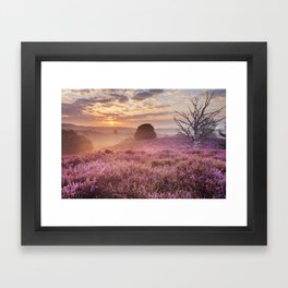 III - Blooming heather at sunrise, Posbank, The Netherlands Framed Art Print