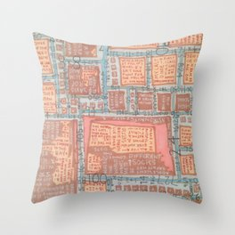 Adolescent Safety Net- day version Throw Pillow