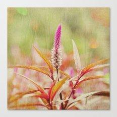 Sunday at the Arboretum: Purple Canvas Print