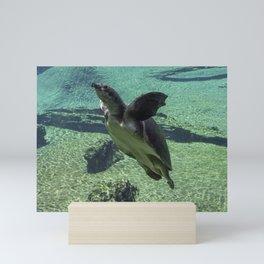 Snorkling Mini Art Print