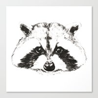 racoon Canvas Prints featuring racoon by eclecticliving