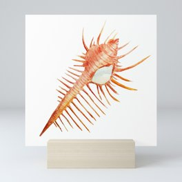 Conch Mini Art Print