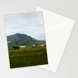 Icelandic Horses Posing for a Photo Stationery Cards