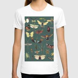 Lovely Butterfly Green T-shirt