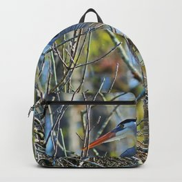 New Perspectives Backpack