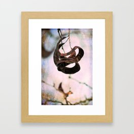 Seed Pod Framed Art Print