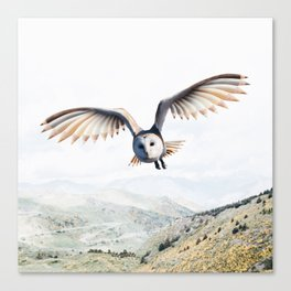 Pencil Owl Canvas Print
