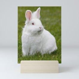 white bunny rabbit Mini Art Print