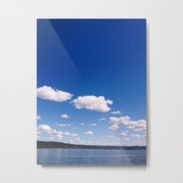 Lake Cayuga, NY Metal Print