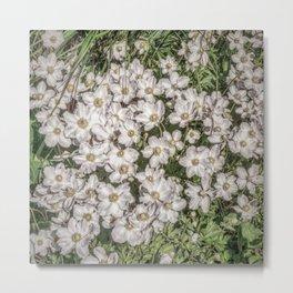 JC FloralArt 01 Metal Print