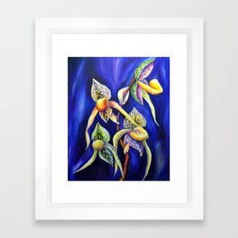 Orchid -  The Paphiopedilum , known as Lady's Slipper Framed Art Print