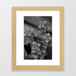 Greenhouse I Framed Art Print