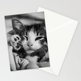 Hi There - From a Sleepy Kitty Stationery Cards
