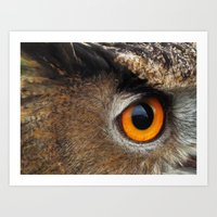 Orange Bird Eye. Eurasian / European Eagle Owl. Art Print