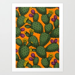 Desert sunset Art Print