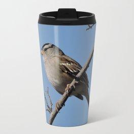 A White-Crowned Sparrow Eyes the Botanic Garden Travel Mug