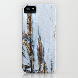 009 iPhone Case