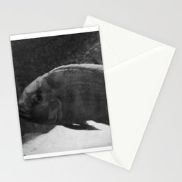 through the looking glass#2 Stationery Cards