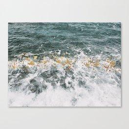 Fool's Gold Canvas Print