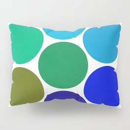 Cool Science Circles Pillow Sham