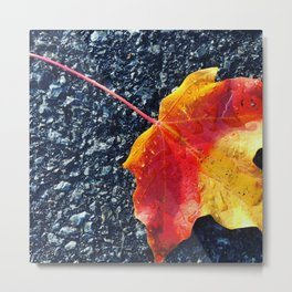 Fall in yellow and red Metal Print